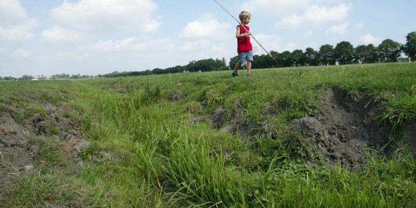Droogte in gebied van waterschap Aa en Maas ondanks hoosbuien