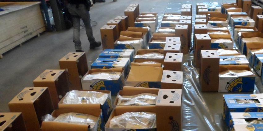 Drie aanhoudingen na vinden 900 kilo cocaïne tussen partij bananen