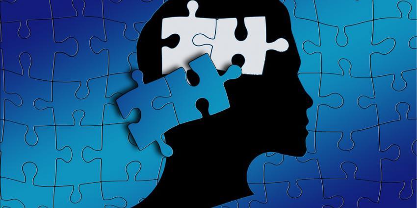Onderzoekers en bedrijfsleven willen autisme ontrafelen en behandelen