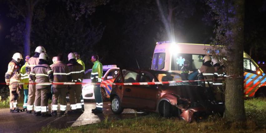 automobilist, overleden, eenzijdig ongeval, boom