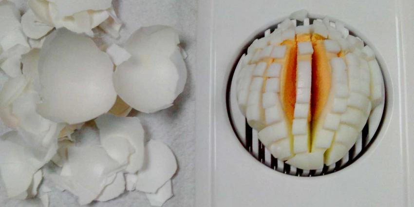 Winnie Sorgdrager leidt onderzoek crisis Fipronilbesmetting eieren