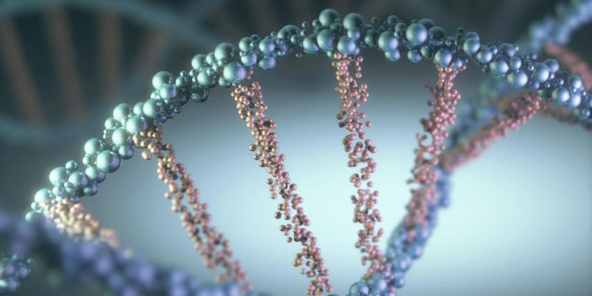 Onderzoekers zien nieuw gen ontstaan in het lab