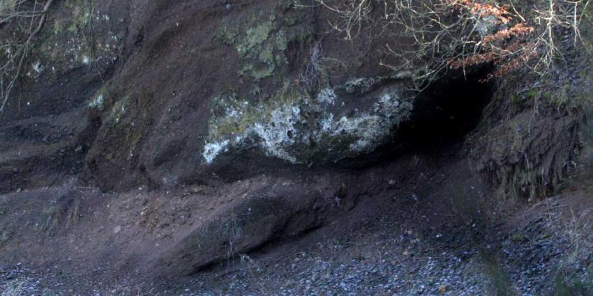 Politie stuit na tip op hennepkwekerij in Valkensburgse grotten
