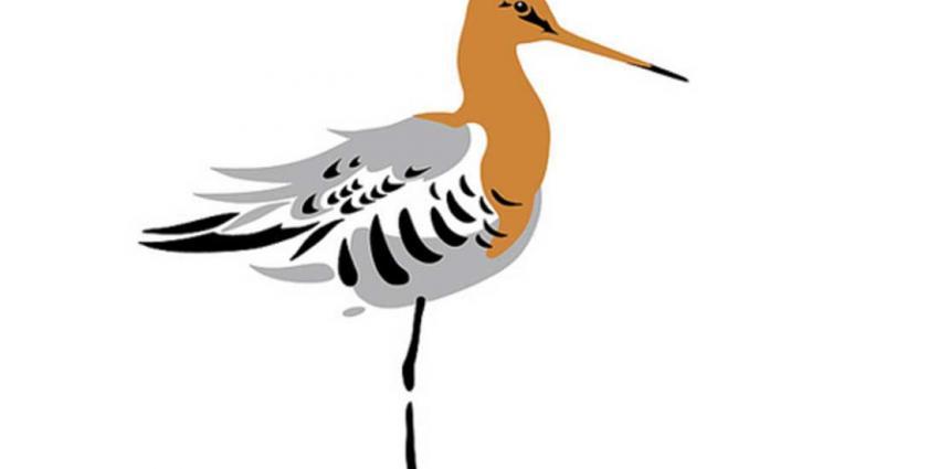 Nederland heeft nu ook een Nationale Vogel, de grutto