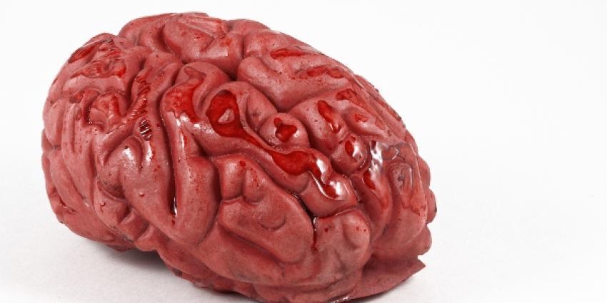 Ontstaan Alzheimer begint door stress