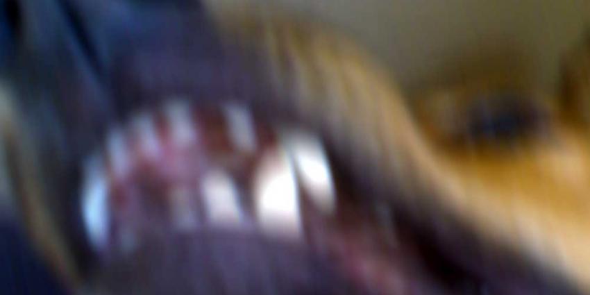 Foto van hond bek tand   Archief EHF