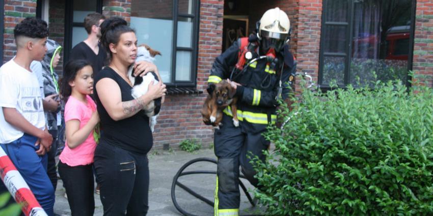 Bewoner en dieren uit woning gered bij brand