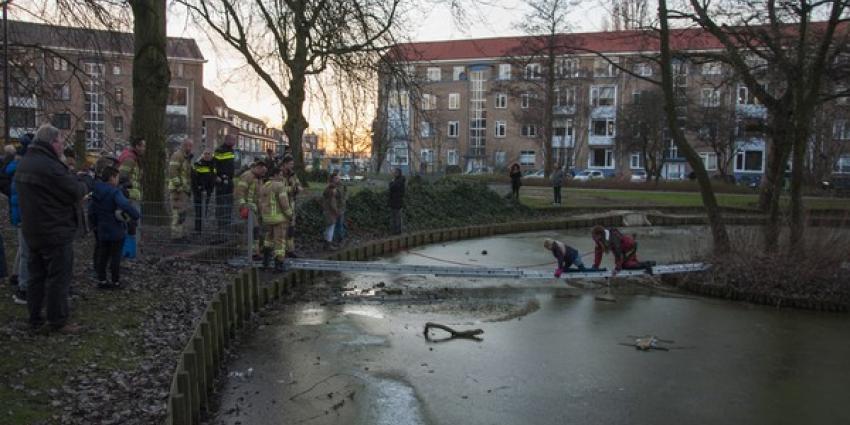 Brandweer redt meisje van eilandje