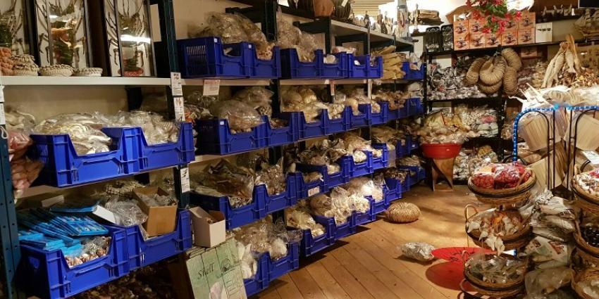 Recordvangst politie en douane in onderzoek naar wildlife crime