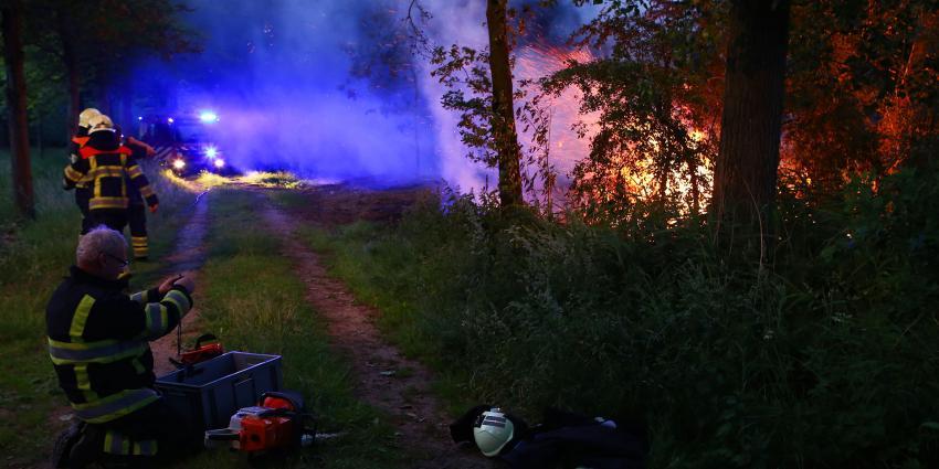 Metershoge vlammen in bosperceel tussen Liempde en Sint-Oedernode