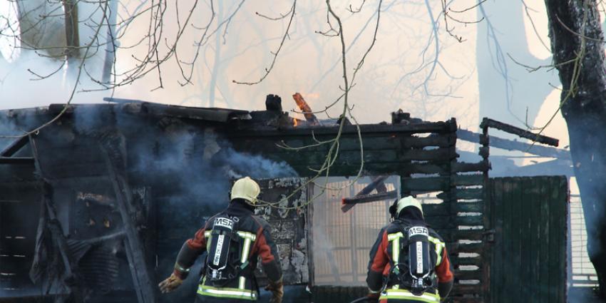 Brand legt schuurtje in de as in Delfzijl