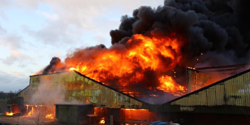 Grote brand in varkenstal Oirschot