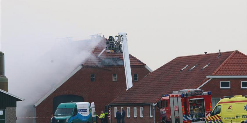 Kalveren omgekomen bij schuurbrand in Veendam