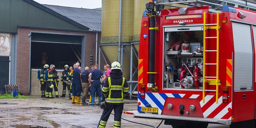 Brand bij varkenshouderij aan het Tongeren in Boxtel