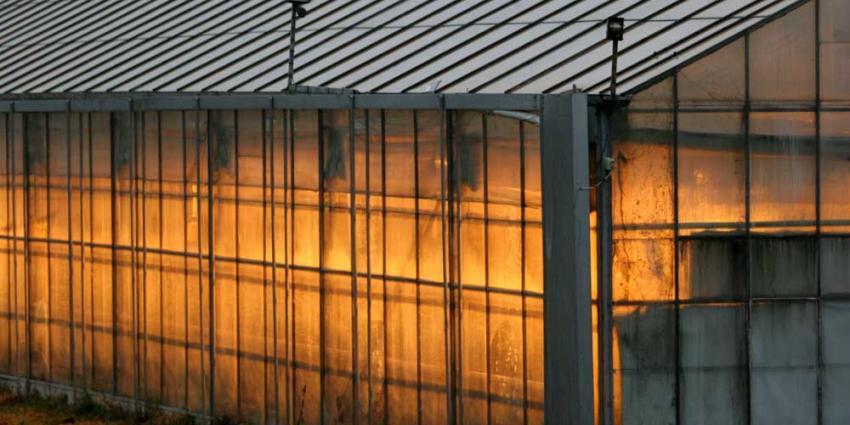 Werken in agrarische sector vaak onveilig en niet eerlijk