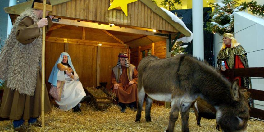 Dier ontsnapt uit levende kerststal