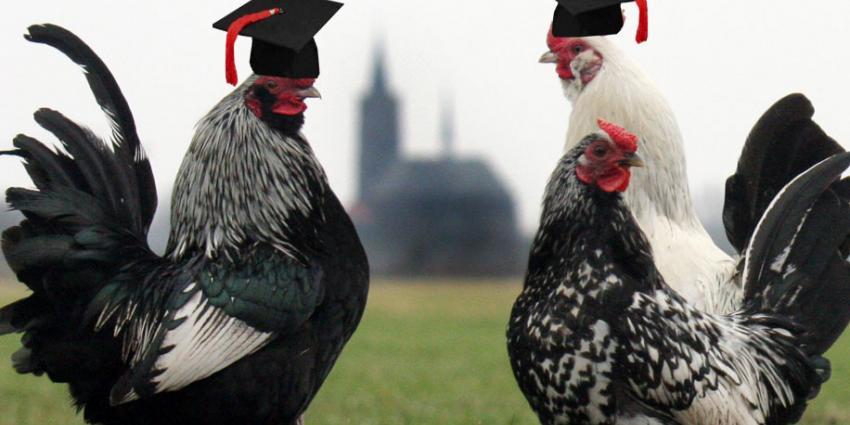Vijftig hoogleraren ondersteunen campagne 'Stop de Kiloknaller'