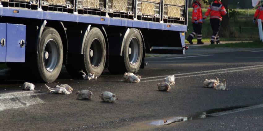 Vrachtwagen met kippen raakt in brand in Nieuw Schoonebeek