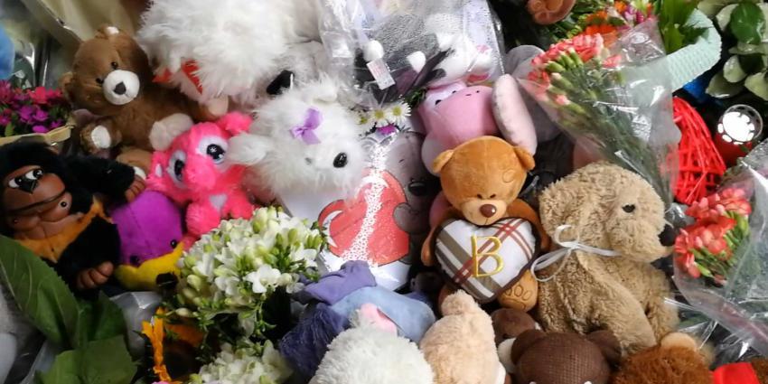 Herdenkingsveld Stint-ongeval Oss opgeruimd