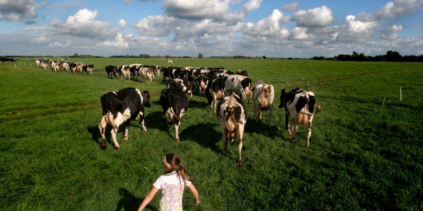 Meer boeren met veel eigen grond