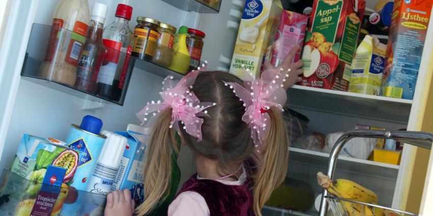 Zuinige koelkast bespaart ruim 40 euro per jaar aan stroomkosten