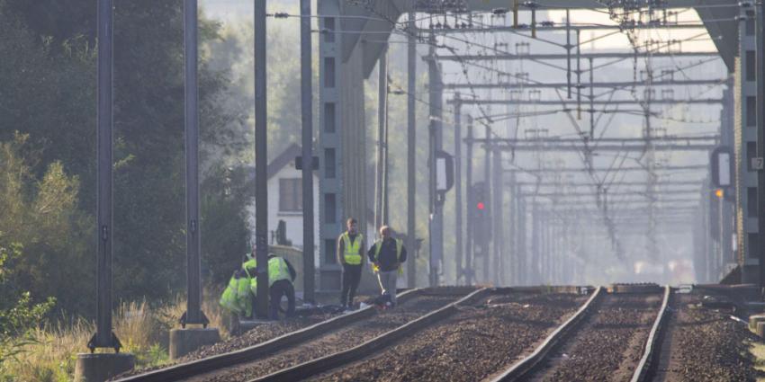 Koperdieven leggen treinverkeer plat op traject Schiedam-centrum