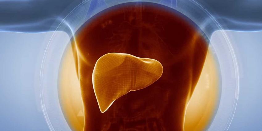 Toenemend aantal onnodige doden door leverziekten chronische hepatitis B