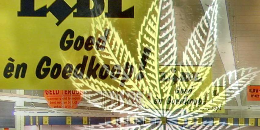 Zwitserse Lidl gaat zakjes cannabis verkopen