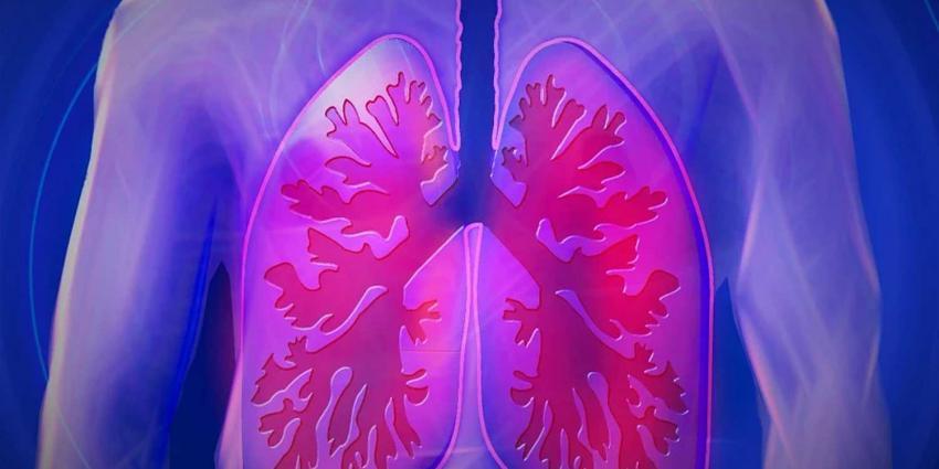longen-afbeelding