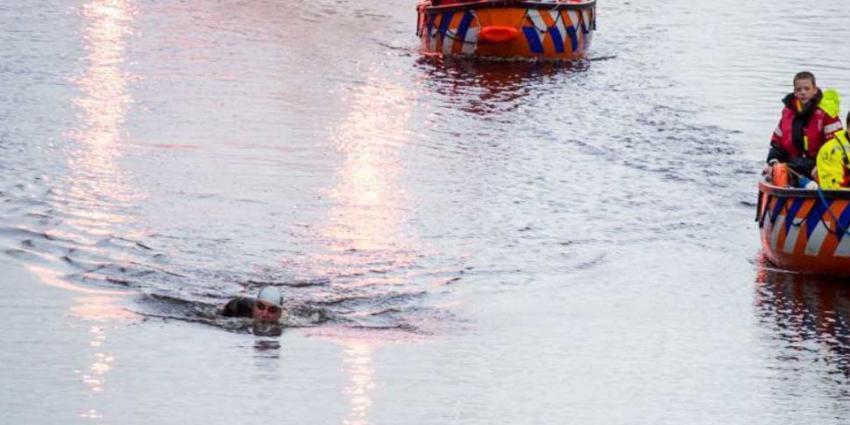 Maarten van der Weijden 11stedenzwemtocht It Giet Oan!