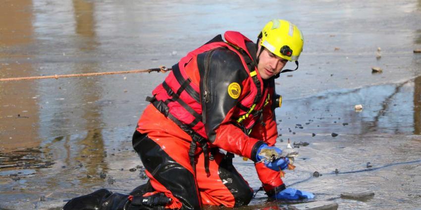 Brandweer redt in visdraad verstrikte meeuw van het ijs
