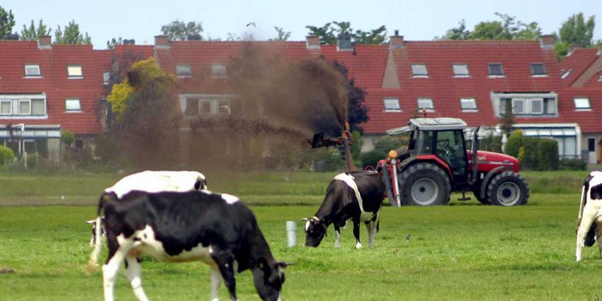 mest-koe-fosfaat-boer-tractor