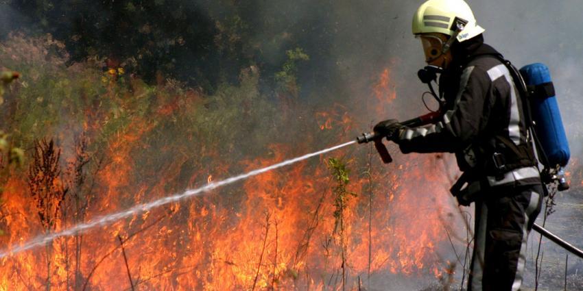 Brandweer druk met brandjes blussen door baldadigheid in aanhoudende droogte
