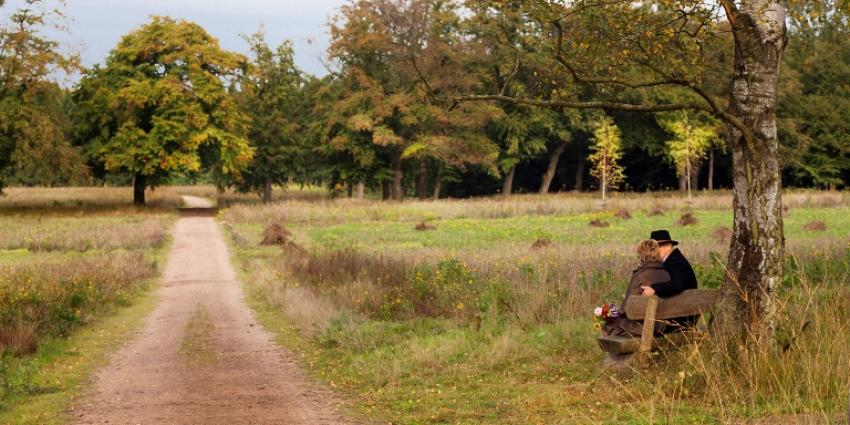 Natuurbegraafplaats   Natuurmonumenten