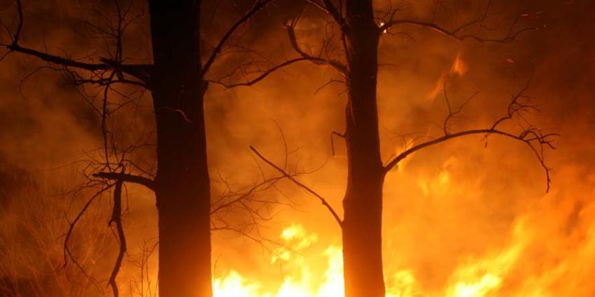 Grote brand in de Deurnese Peel