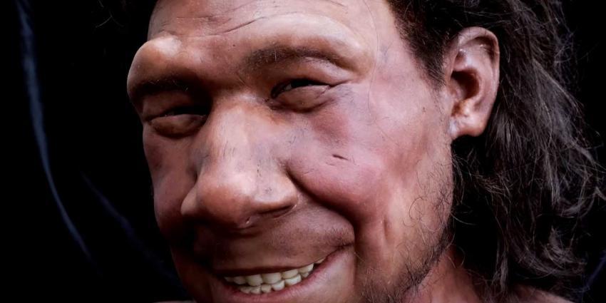 neanderthaler-krijn-reconstructie