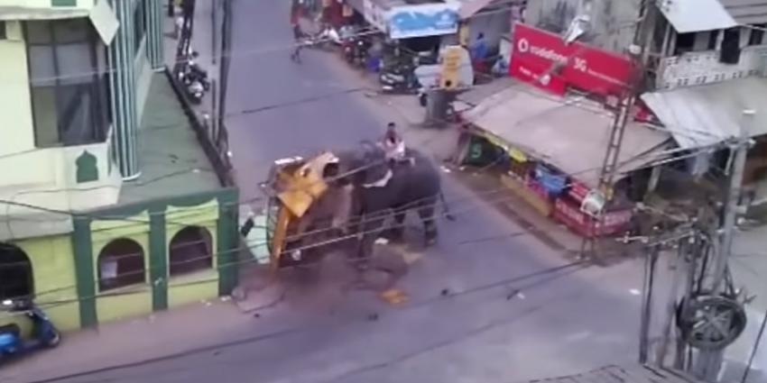 Olifant richt ravage aan op markt in India