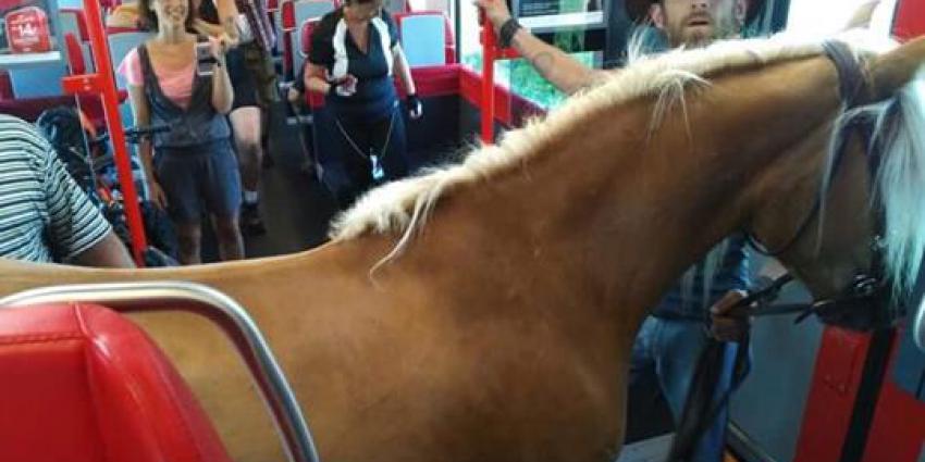 paard, trein, oostenrijk