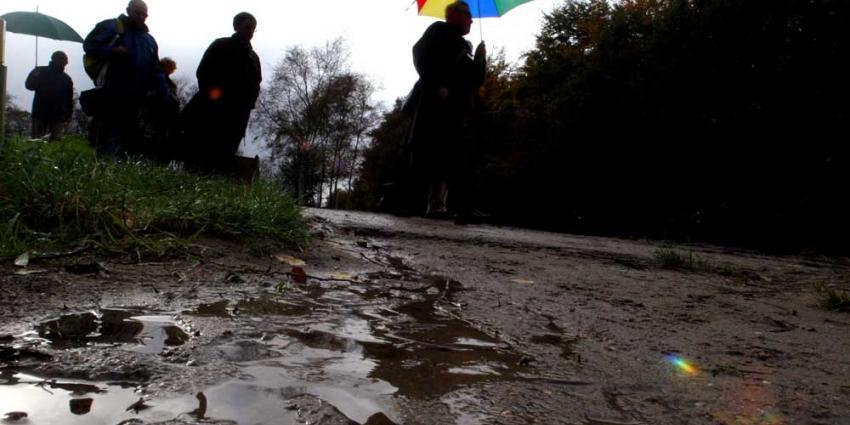 Foto van paraplu regen bos   Archief EHF