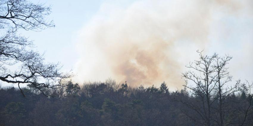 Natuurbrand in Alteveer