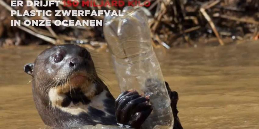 Milieuorganisatie Greenpeace start petitie omdat Coca-Cola de zee flest