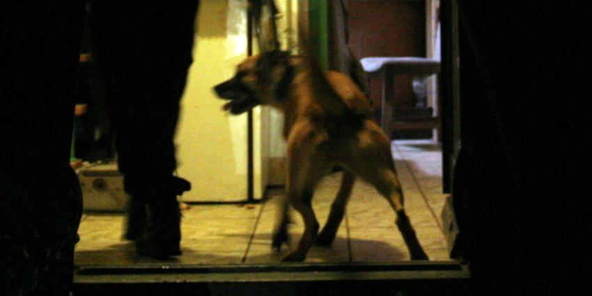 Pas gediplomeerde politiehond geeft belager volle laag