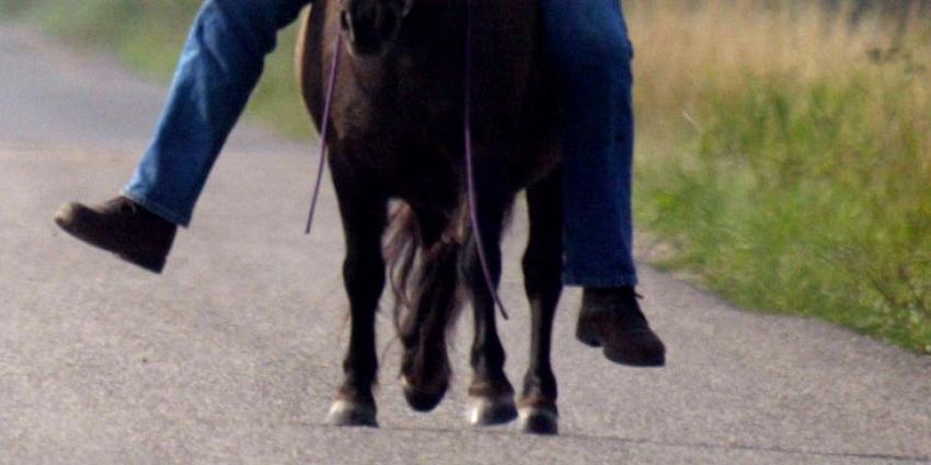 Man op pony