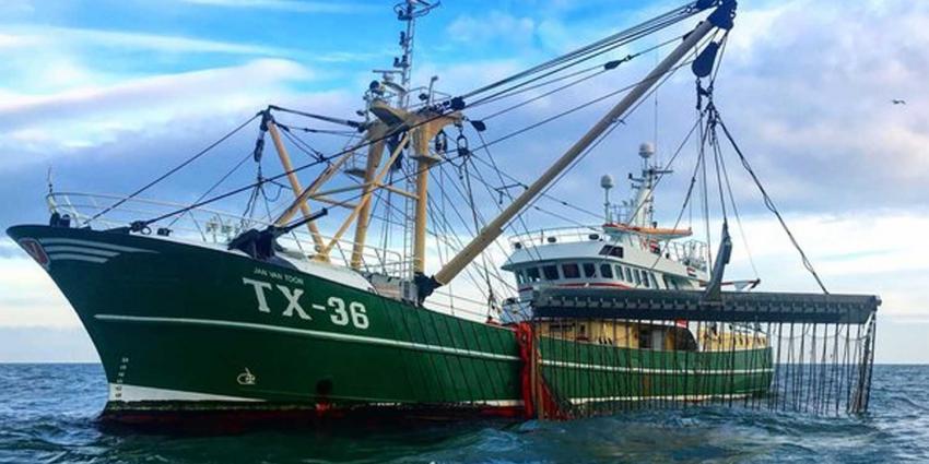 'Totaalverbod op pulsvisserij is gitzwarte uitkomst stemming EP'