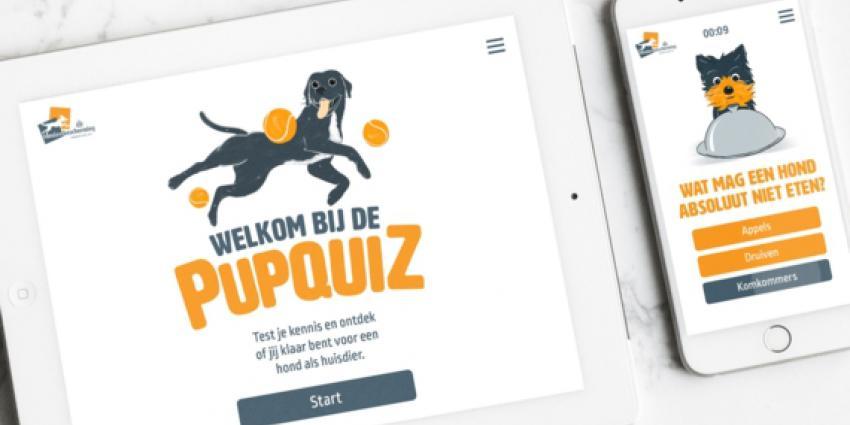 Screenshot Pupquiz