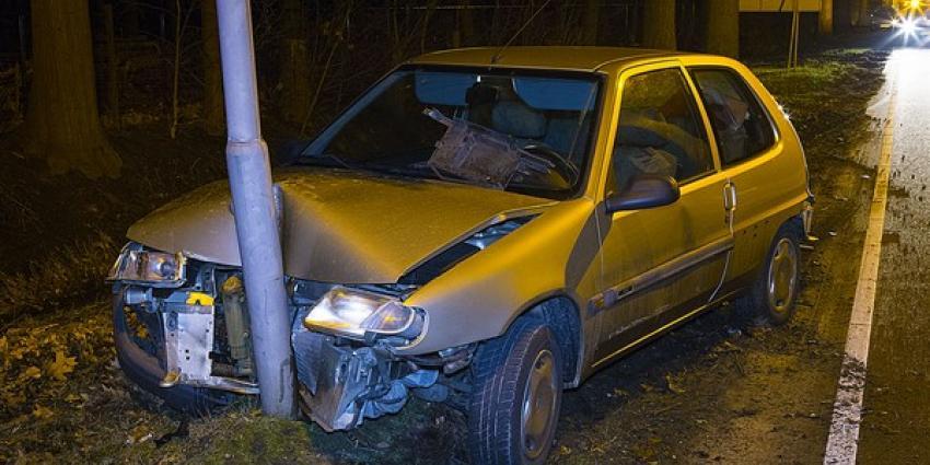 Overstekende ree overleden bij verkeersongeval in Boxtel
