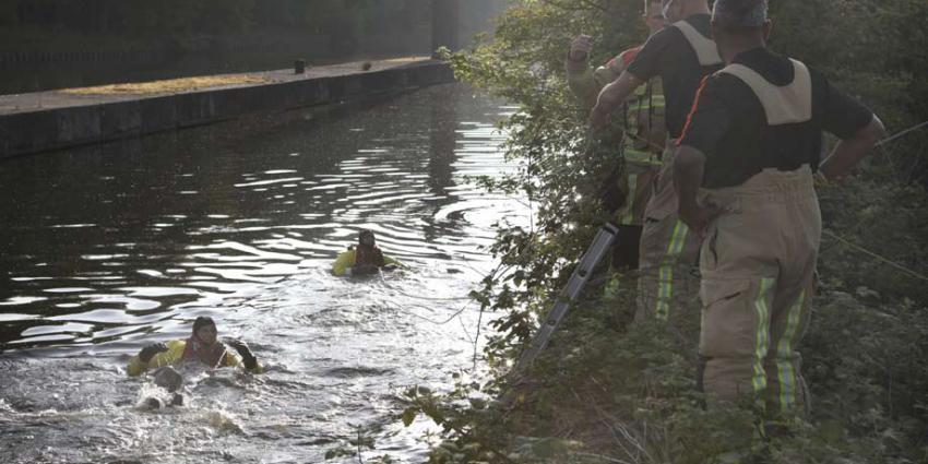 Brandweer redt hert van verdrinkingsdood