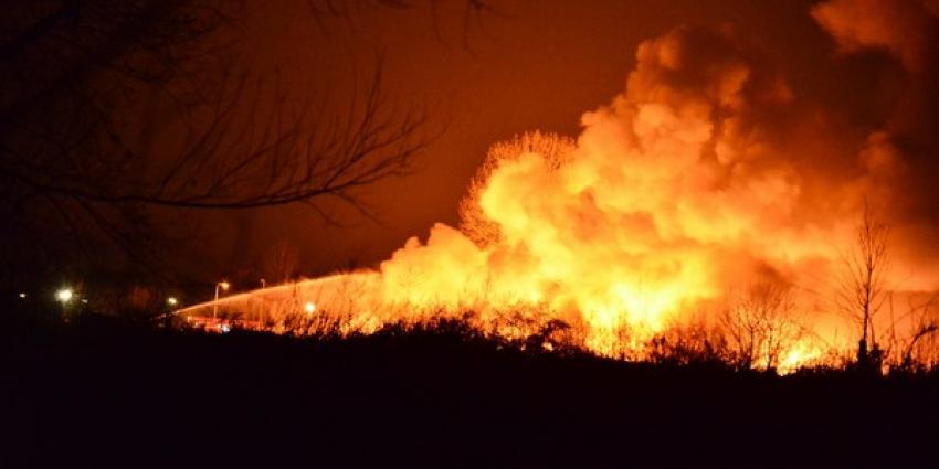 Politie start onderzoek naar brandoorzaak jachthaven Roermond