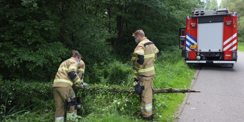 Brandweer zaagt boom