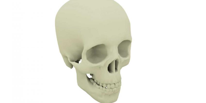 RIVM waarschuwt om ruimte 3D-printer goed te ventileren